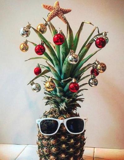 Abacaxi de Natal