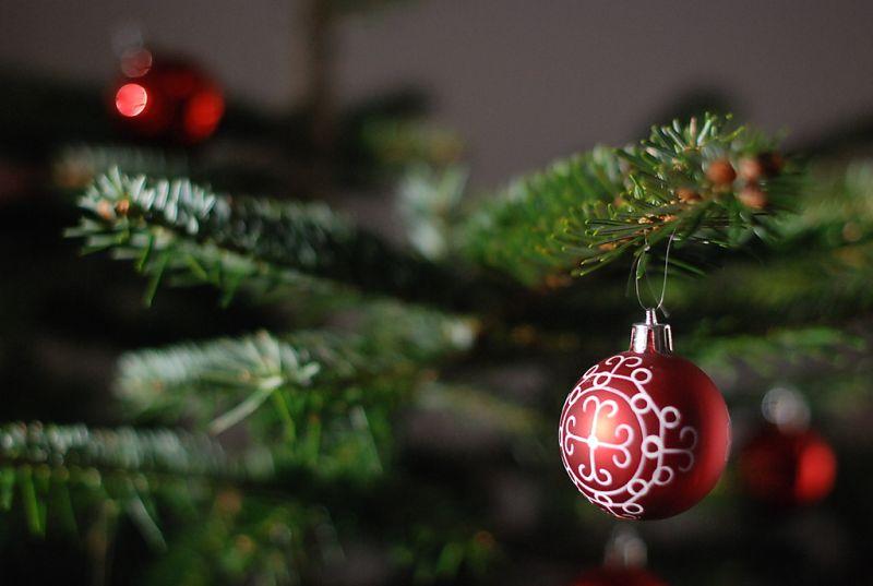 Dia de montar árvore de natal